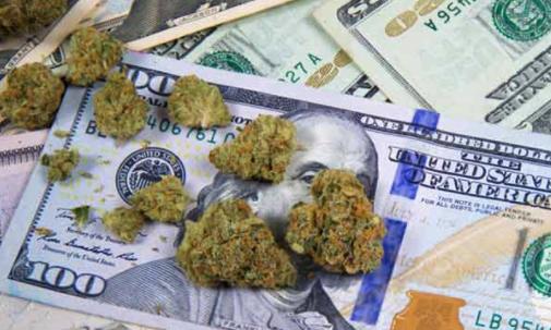 The 3 Best Marijuana Stocks to Buy Today